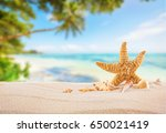 tropical beach with sea star on ... | Shutterstock . vector #650021419