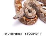 boa imperator hog island...   Shutterstock . vector #650084044