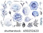 Set Watercolor Elements Of Blu...