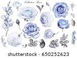 Set Watercolor Elements Of Blu...