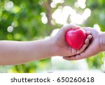 close up of couple hands... | Shutterstock . vector #650260618