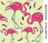 two flamingos with red feathers.... | Shutterstock .eps vector #650263288