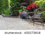 garden backyard with lush... | Shutterstock . vector #650273818