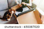 cat helping young beautiful... | Shutterstock . vector #650387020