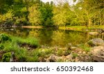 beautiful reflections on the... | Shutterstock . vector #650392468