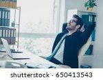 close up portrait of successful ...   Shutterstock . vector #650413543