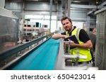 portrait of smiling factory... | Shutterstock . vector #650423014