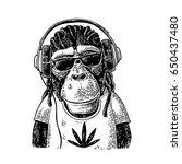 monkey in headphones ... | Shutterstock .eps vector #650437480