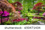 traditional japanese garden in... | Shutterstock . vector #650471434