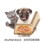 Stock photo funny cat and puppy with open pizza boxes isolated on white background 650508088