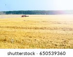 harvester machine working to... | Shutterstock . vector #650539360