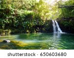 tropical waterfall lower... | Shutterstock . vector #650603680