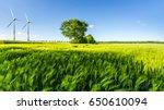 green wheat field with tree ... | Shutterstock . vector #650610094