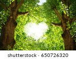 Silhouette Of A Heart In The...