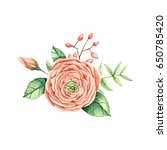 bouquet of flowers  greens and...   Shutterstock . vector #650785420