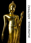 golden buddha's statue on black ...   Shutterstock . vector #65079442
