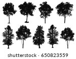 collection of silhouette of... | Shutterstock . vector #650823559