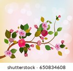 Nature Background With Blossom...