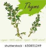 flowering fresh thyme. fresh... | Shutterstock .eps vector #650851249