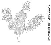 coloring page of cockatoo... | Shutterstock .eps vector #650862148