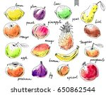 hand drawn ink sketch and... | Shutterstock .eps vector #650862544
