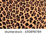 leopard print pattern | Shutterstock .eps vector #650898784