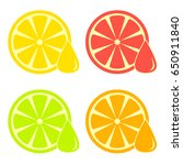 colorful citrus round slice... | Shutterstock .eps vector #650911840
