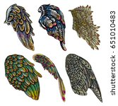 set of colorful bird wings of... | Shutterstock .eps vector #651010483