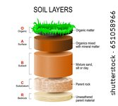 soil layers. soil is a mixture... | Shutterstock .eps vector #651058966