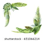 watercolor wreaths tropical... | Shutterstock . vector #651066214