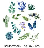 Hand Painted Watercolor Plant...