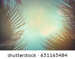 palm trees over sky in vintage... | Shutterstock . vector #651165484