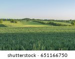 green fields in the evening sun | Shutterstock . vector #651166750