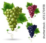 Photo Realistic Grape Set. Ful...