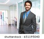 portrait of an handsome... | Shutterstock . vector #651195040