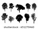 black tree silhouettes on white ... | Shutterstock . vector #651270460