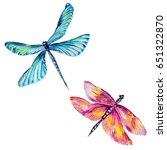 insect dragonfly set in a... | Shutterstock . vector #651322870