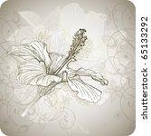 Hibiscus Flower   Vector Hand...