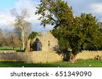 Ruins Of The Adare Friary In...