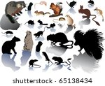 illustration with different... | Shutterstock .eps vector #65138434