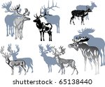 illustration with deer... | Shutterstock .eps vector #65138440