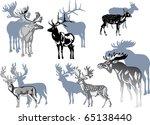 illustration with deer... | Shutterstock .eps vector #65138440