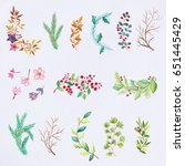 watercolor flowers and leaves... | Shutterstock . vector #651445429