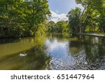 pond at mauritius ssr botanical ... | Shutterstock . vector #651447964