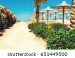 chaise lounges and parasols on... | Shutterstock . vector #651449500