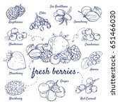 doodle set of fresh berries  ... | Shutterstock .eps vector #651466030