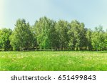park in the center of the city... | Shutterstock . vector #651499843