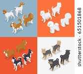 isometric small dog breeds with ... | Shutterstock .eps vector #651501868