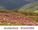 beautiful summer sunrise....   Shutterstock . vector #651632284