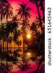 Silhouette Coconut Palm Trees...